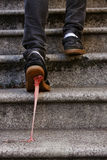 Stepped In It. A shot of a guy's feet walking up steps, with pink bubble gum stuck to the bottom of his shoe and attached to the ground stock images