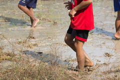 Stepped foot on the muddy ground. Foot mud is fun for kids. Exercise is good for children Stock Image