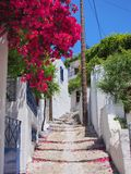 Stepped Path, Skyros Greek Island. A steeply stepped path, or lane or street in Chora (main town) on Skyros, a Greek Island of the Sporades group, Greece royalty free stock photos