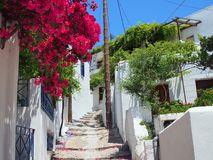 Stepped Path, Skyros Greek Island. A steeply stepped path, or lane or street in Chora main town on Skyros, a Greek Island of the Sporades group, Greece, with red Stock Photography
