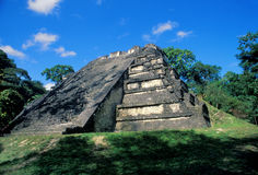 Stepped Pyramid. At Tikal Stock Photo