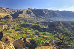 Stepped terraces in Colca Canyon in Peru Royalty Free Stock Photos