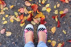 Stepping into Fall. Woman's feet in colorful sneakers in autumn leaves Royalty Free Stock Photos