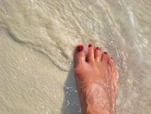 Stepping into Ocean Waves Stock Photography