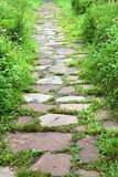Stepping stone path Stock Photo