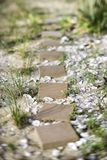 Stepping stone pathway Royalty Free Stock Images