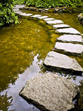 Stepping stones. Form walking path over the pond Stock Image