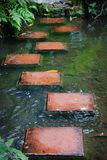 Stepping stones across stream Stock Image