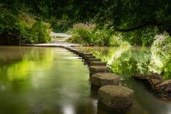 Stepping stones  Boxhill, Surrey, England g. Stepping stones crossing the river Mole at Boxhill Surrey England Stock Image