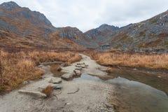 Stepping Stones Across Stream Stock Image Image Of Nature Stream 24600001