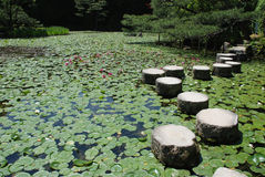 Stepping Stones at Heian-Jing Shrine. Stepping stones across a pond in the gardens of Heian-Jing Shrine in Kyoto Royalty Free Stock Photos