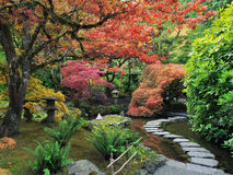 Stepping stones in the Japanese Garden Stock Photos