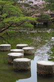 Stepping stones in Kyoto Stock Photography