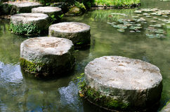 Stepping stones on a lotus pond Royalty Free Stock Photography