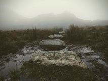 Stepping Stones into the Mist - Ben A`an, Scotland stock photos