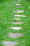 Stepping stones in a meadow Royalty Free Stock Image