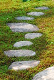 Stepping stones through moss Royalty Free Stock Image
