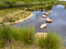 Stepping stones obstacle in pond Royalty Free Stock Photography