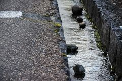 Stepping stones. Rocks on the stream by the road Stock Photo