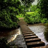 Stepping stones. In park Stock Photography