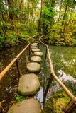 Nanzen-ji Zen Garden Stock Images