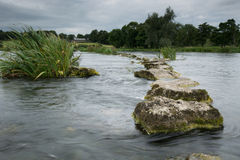 Stepping Stones to the salmon beats 4. The stepping stones to the salmon fishing beats on the River Shannon stock photos