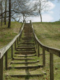 Stepping up to Nature. Wooden steps in nature built right into the hillside upward for a higher view Royalty Free Stock Photography