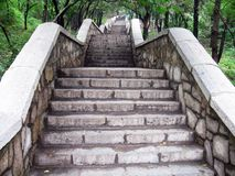 Steps. The stoned steps  winding through the forest Royalty Free Stock Image