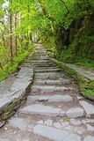 Steps Stock Photography