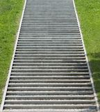 Steps. Flight of concrete or stone steps with grass either side Royalty Free Stock Photo