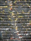 Steps of the ancient amphitheatre Royalty Free Stock Photo