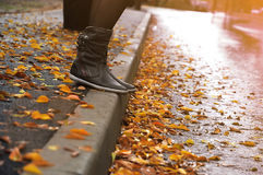 Steps of autumn season Stock Images