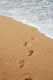 Steps on the beach. Footprints on the sand of the beach Stock Images