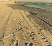 Steps on the beach. By a beautiful winter morning 2016. It`s on Daytona Beach, Florida stock photography