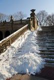 Steps at Bethesda Terrace. Central Park's Bethesda Terrace with Snow Stock Photos