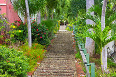 The 99 steps in Charlotte Amalie, St Thomas, US VI. Royalty Free Stock Photo