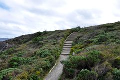 Steps in the Coastal Dunes Royalty Free Stock Photos