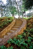 Steps in countryside. Curving stone steps receding through countryside, trees in background Stock Photo