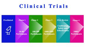 Drug Clinical Trials. Steps in Drug Clinical Trials royalty free illustration