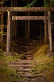 Steps into the forest, NIkko stock image