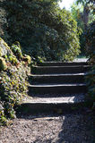 Steps in a garden. Royalty Free Stock Photography