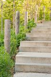 Steps going up amidst green foliage. At the Brooklyn Bridge Promenade Royalty Free Stock Photos