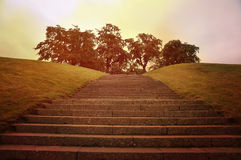 Steps going up Royalty Free Stock Photo