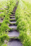 Steps in the grass Royalty Free Stock Photos