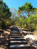 Steps on hiking trail Royalty Free Stock Photos