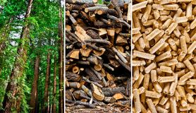 Wood pellets production Stock Image
