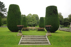 Steps in landscaped garden. Scenic view of steps in landscaped garden with decorative hedges Stock Photo