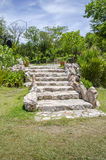 Steps leading to garden Royalty Free Stock Photos