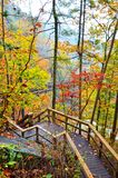Steps Leading to a Suspension Bridge. Wooden steps to the suspension bridge at Tallulah Gorge State Park in Georgia on a colorful autumn day royalty free stock photos