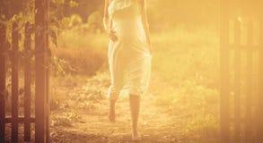 Steps of motherhood. stock photography